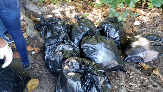 international_coastal_cleanup_day_jamaica_black_garbage_bags.
