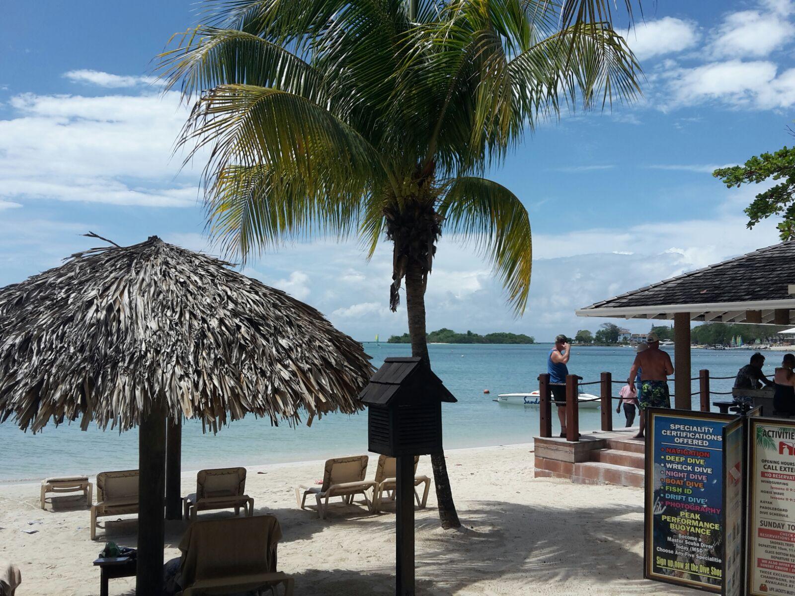 jamaican tourist board information