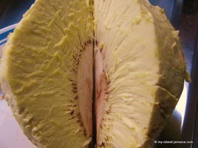 Jamaican Breadfruit - Roasted.
