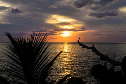 sunset in belmont jamaica