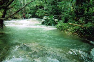 Mayfield Falls