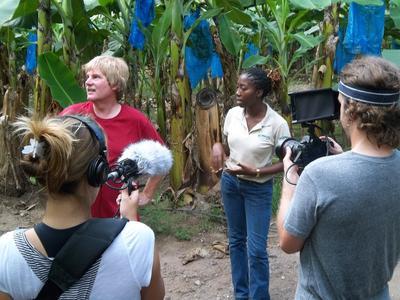 at the banana plantation