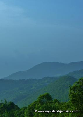 The beautiful Jamaica Blue Mountains
