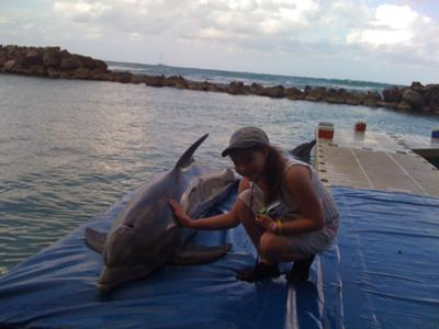 one on one with a dolphin!