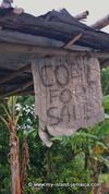 random sign in Jamaica - coal for sale