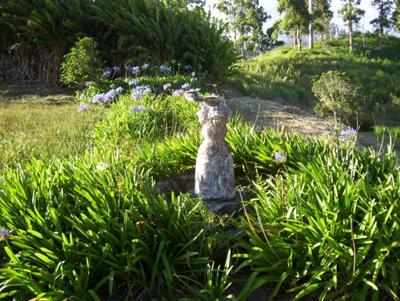 Valda's Garden